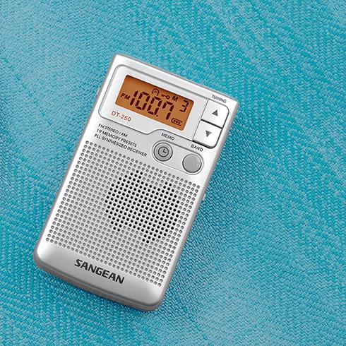 바닥에 놓인 DT-250 디지털 휴대용 라디오