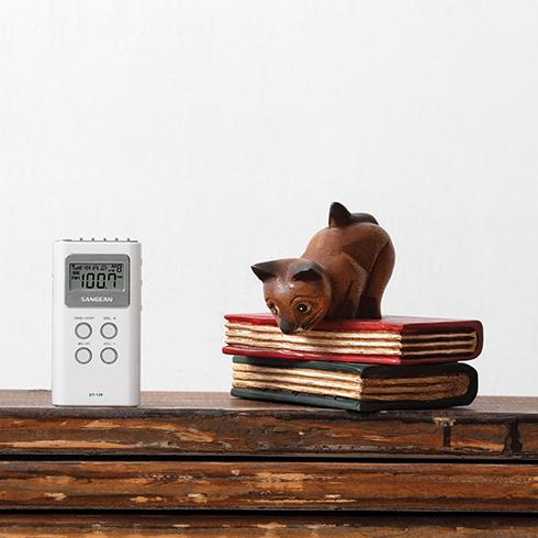 책상위의 DT-120 디지털 휴대용 라디오