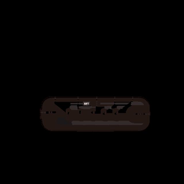 DT-160 디지털 휴대용 라디오 상면